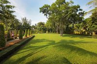 Movenpick Karon - Garden Lawn