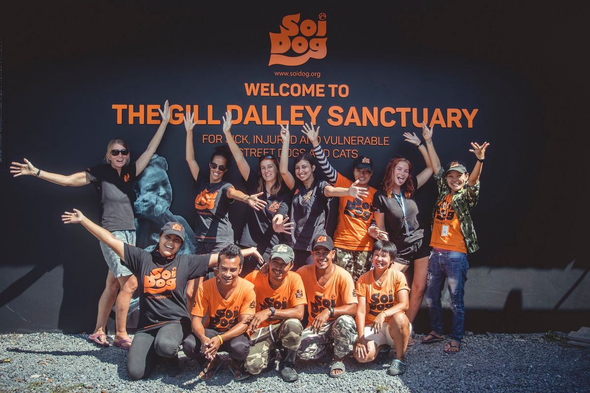 Soi Dog Foundation - Team & Volunteers