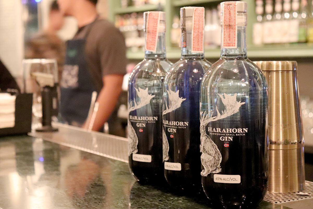 Harahorn Gin Tasting - 001