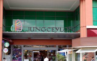 Jungceylon - Teaser